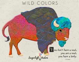 112a wild-colors